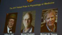2017 Nobel Tıp Ödülü sirkadiyen ritm kontrol mekanizmasına verildi